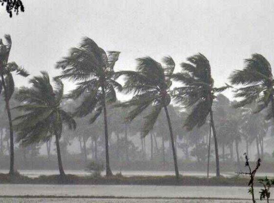 India's monsoon rains seen average in 2020